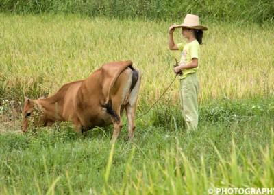 Joop Luimes_China_vrouw met koe_1673